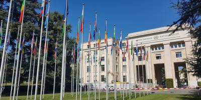 Human Rights Council: our panel on access to information