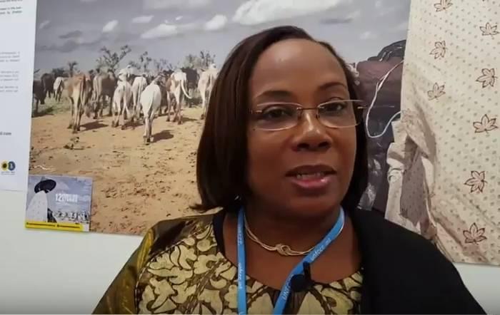 La Ministre de l'environnement du Mali, interviewée par un envoyé spécial de la Fondation Hirondelle à la COP23.